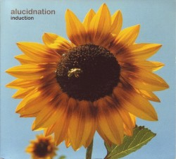 Alucidnation - The Art of Conversation